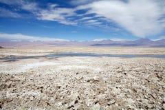 Chaxa盐水湖在撒拉族de阿塔卡马,智利 免版税图库摄影