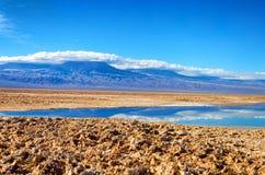 Chaxa Lagoon in Chile Royalty Free Stock Photo