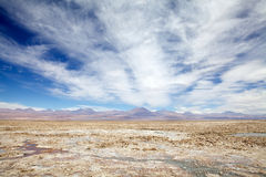 Chaxa Lagoon in the Salar de Atacama, Chile Royalty Free Stock Images