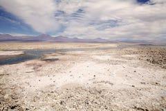 Chaxa lagun i Salar de Atacama, Chile Royaltyfri Bild