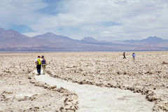 Chaxa lagun i Salar de Atacama, Chile Arkivfoto
