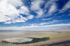 Chaxa lagun i Salar de Atacama, Chile Royaltyfria Bilder