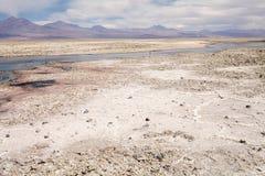 Chaxa lagun i Salar de Atacama, Chile Royaltyfria Foton