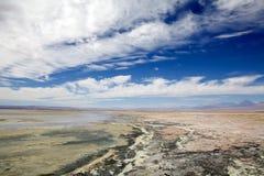 Chaxa lagun i Salar de Atacama, Chile Royaltyfri Fotografi