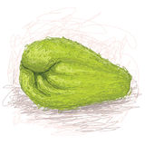 Chayote Royalty Free Stock Photos