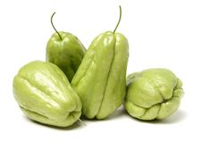 Chayote is a member of the squash stock images