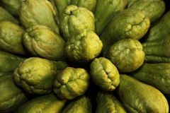 chayote Royalty Free Stock Photo