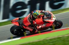 Chaz Davies Ducati Panigale R Aruba het rennen-Ducati Imola SBK 2015 Stock Afbeeldingen