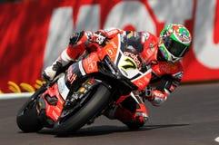 Chaz Davies - ITA Ducati Panigale 1199 R Aruba det som springer - Ducati Fotografering för Bildbyråer