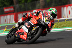 Chaz Davies - ITA Ducati Panigale 1199 R Aruba det som springer - Ducati Royaltyfria Foton