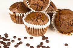 Chbocolate muffins Zdjęcia Royalty Free