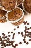 Chbocolate muffins Fotografia Stock