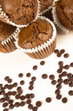 Chbocolate muffins Stock Photography