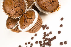 Chbocolate muffins Royalty Free Stock Image