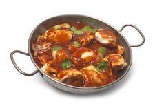 Chcken curry arkivfoto