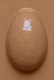 Chcoclate derretido derramado sobre um ovo da páscoa Fotografia de Stock