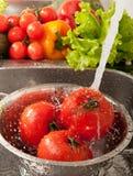 chełbotań vegatables Obrazy Stock