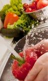 chełbotań vegatables Obrazy Royalty Free