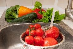 chełbotań vegatables Zdjęcie Stock