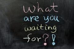 Che cosa state aspettando? Fotografia Stock