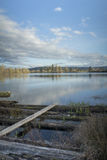 Cheadle jeziora odbicie Fotografia Royalty Free