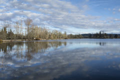 Cheadle Lake Reflection. Trees and clouds reflected in Cheadle Lake mill pond in Lebanon, Oregon Stock Photography