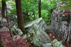 Cheaha State Park Alabama. Rocks scatter the landscape at Cheaha State Park in Alabama Stock Images
