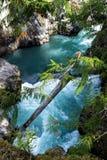 Cheakamus-Fluss lizenzfreie stockfotos
