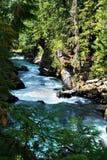 Cheakamus-Fluss stockbilder