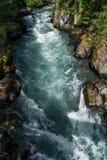 Cheakamus-Fluss lizenzfreies stockbild