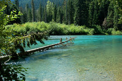 Cheakamus lake Stock Photos