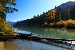 Cheakamus Lake. The Cheakamus Lake north end at fall Royalty Free Stock Photo