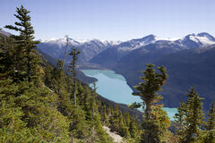 Cheakamus lake Royaltyfri Bild