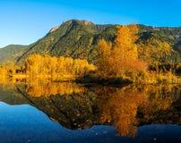 Cheam bagien regionalności Jeziorny park, Rosedale, kolumbiowie brytyjska, C obrazy stock