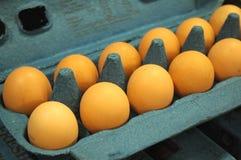 Cheaper By The Dozen. Carton of eggs Royalty Free Stock Image