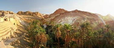 Chebika绿洲宽全景与阿特拉斯山脉的午间su 免版税库存图片