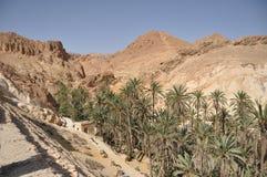 Chebika oas i sydliga Tunisien. Arkivbilder