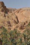 Chebika oas i sydliga Tunisien. Fotografering för Bildbyråer