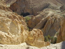 Chebika oasis Stock Image