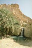 Chebika - oasis tunecino Foto de archivo libre de regalías