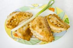 Cheburek, comida, bocado, pasteles, comida, comiendo, placa, empanada, aperitivo Imagen de archivo libre de regalías