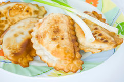 Cheburek mål, mellanmål, bakelse, mat som äter, platta, paj, aptitretare Royaltyfri Foto