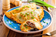Chebureki on a plate, meat pastry. Chebureki on a plate. National Ukrainian, Russian, Turkish, Romanian and Tatar food. Meat pastry meal on a table Royalty Free Stock Photo
