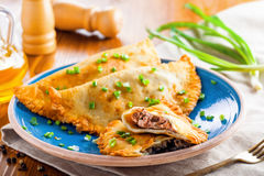 Chebureki on a plate, meat pastry. Stock Image