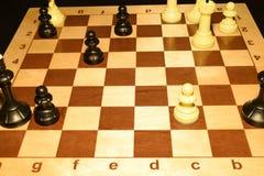 Checheredraad met witte schaakstukken als sportachtergrond stock foto