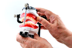 Check dentures Stock Photo