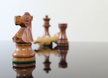 Check mate! Stock Photos