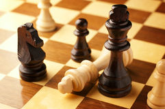 Check mate. As a vanquished king lies on its side at the end of a game of chess surrounded by the opposing black chess pieces Stock Photography