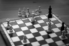 Check mate on black king Royalty Free Stock Images