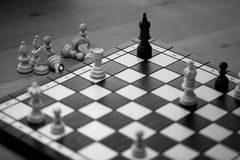 Check mate on black king. Real game Stock Images